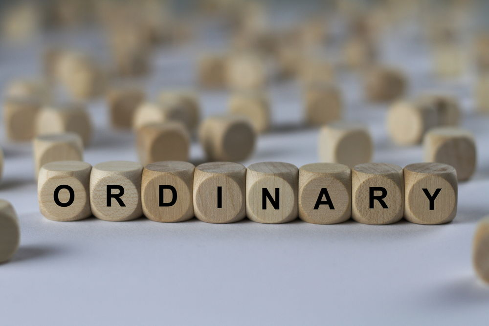 "game pieces put together to spell ""ordinary"""
